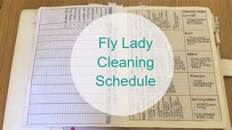 fly ladaires cleaning schedule following the fly routine