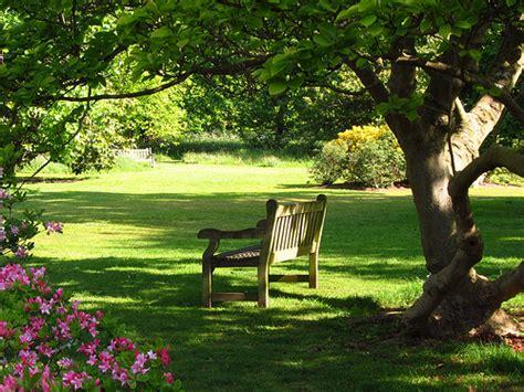 bench in the garden bench in the azalea garden kew gardens flickr photo