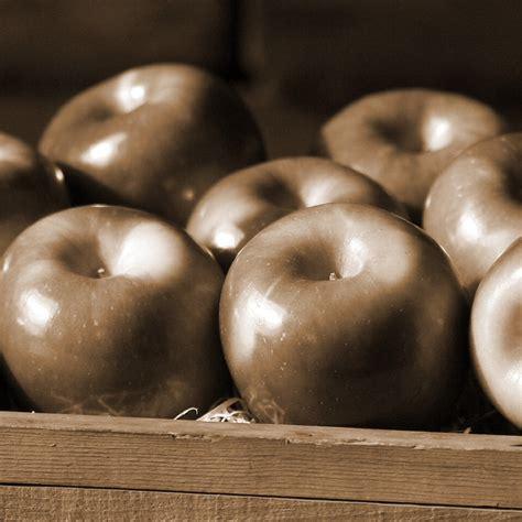 apple before bed useless tips trusper