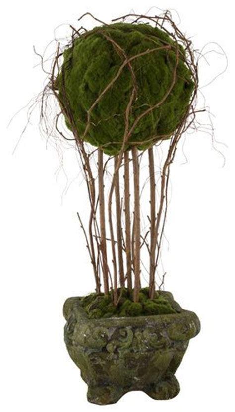 topiary moss moss topiary topiary