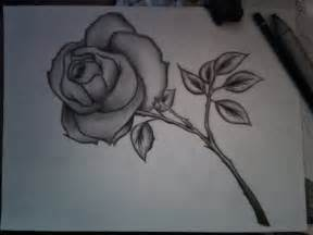 simple pencil sketches of flowers pencil art drawing