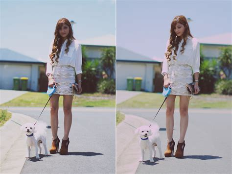 Puppy Giveaway Brisbane - camille sioco loved by na la sheer blouse loved by na la sequined skirts jeffrey