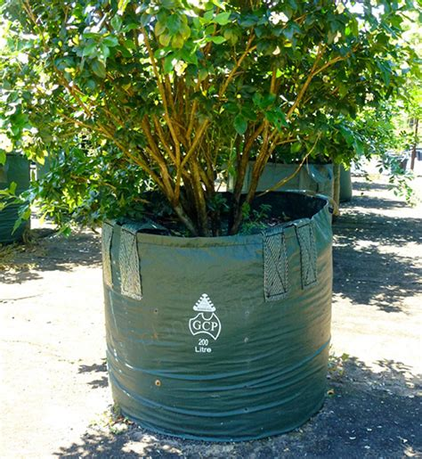 Planterbag 200 Liter Putih 200 Litre Woven Planter Bags Nursery And Garden Supplies Australia