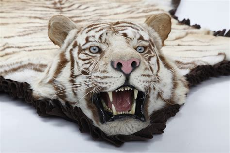 real tiger rugs for sale white tiger skin rug