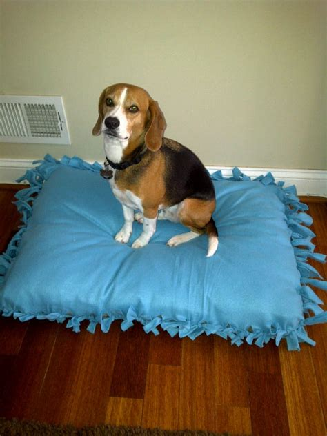 no sew dog bed 17 best images about missy on pinterest no sew fleece