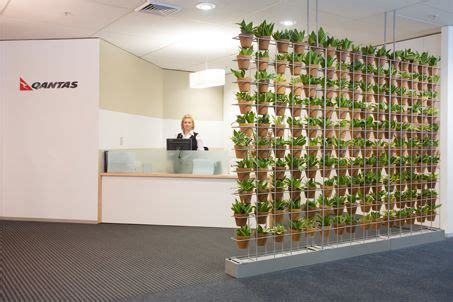 Schiavello Vertical Garden Vertical Gardens Plants In Pots And Plants On