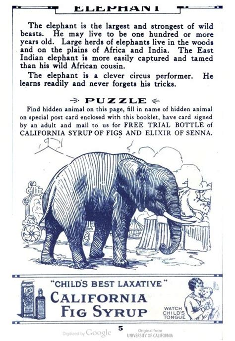 how to find an elephant books the world s catalog of ideas