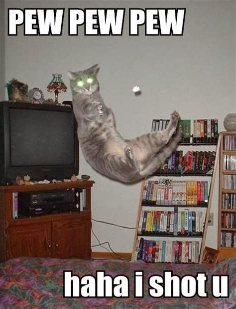 Pew Pew Pew Meme - pew pew pew cat meme cat planet cat planet