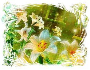 imagenes de flores de bach curso flores de bach centro de salud integral renaser