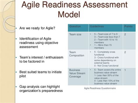 It Assessment Report Template Drs 255 Skills In Vocational Assessment Support Team Performance Agile Assessment Template