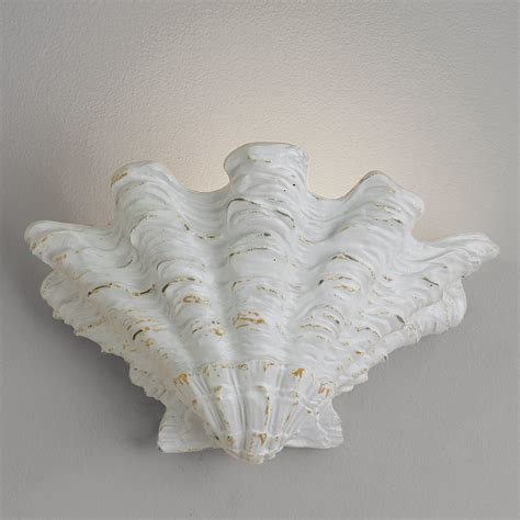 scallop shell wall sconce shades of light