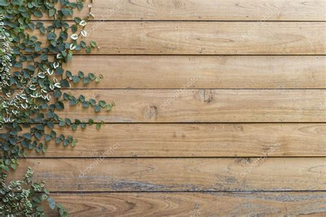 Wall Mural Templates tree on wood planks texture background wallpaper stock