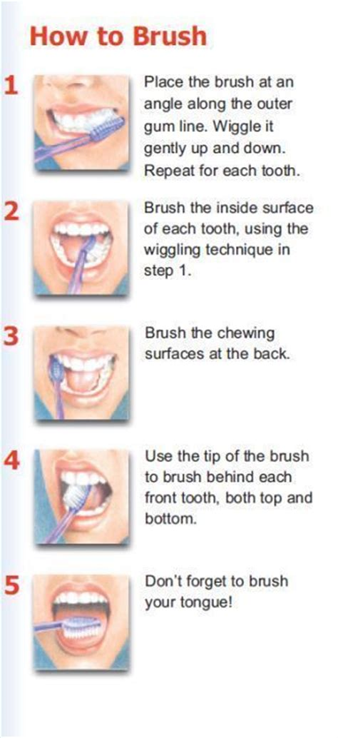 how to brush your hair 9 steps with pictures wikihow how to brush your teeth dental health pinterest