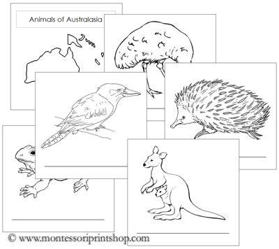 free printable montessori geography materials animals of the continent booklets printable montessori