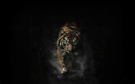 animated tiger   hd wallpaper wpt wallpapercom