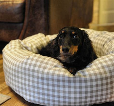 dachshund beds 17 best images about for my mini dachshund on pinterest