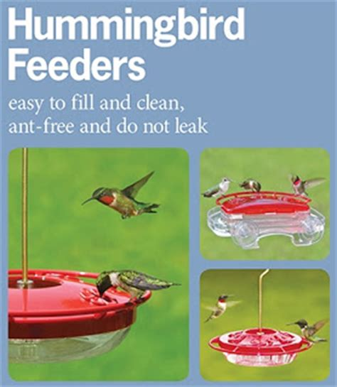 wild birds unlimited how to keep yellow jackets away from