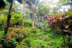Hawaii Botanical Garden Best Botanical Gardens On The Big Island Hawai I List With Map Descriptions
