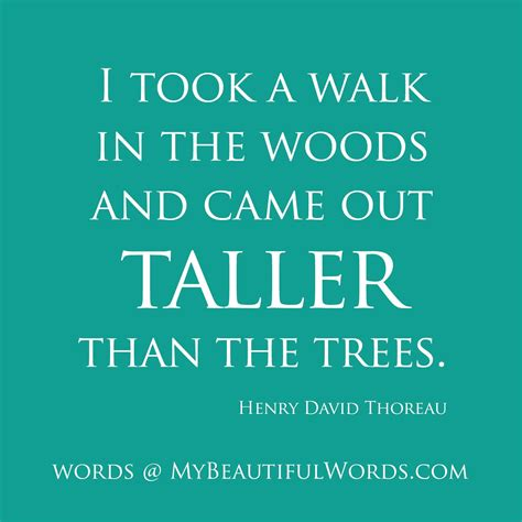 quotes thoreau henry david thoreau quotes tree quotesgram
