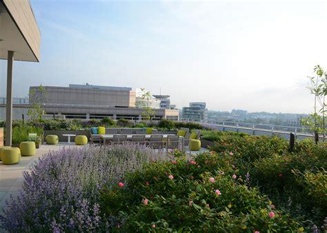 Landscape Architect Dc Spire Dc Ovs Landscape Architecture