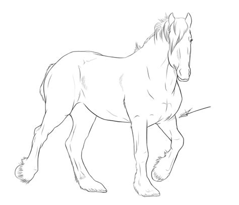coloring pages of clydesdale horses clydesdale horse coloring pages