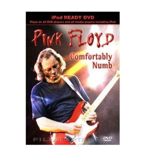 pink floyd comfortably numb album pink floyd comfortably numb uk dvd 438742