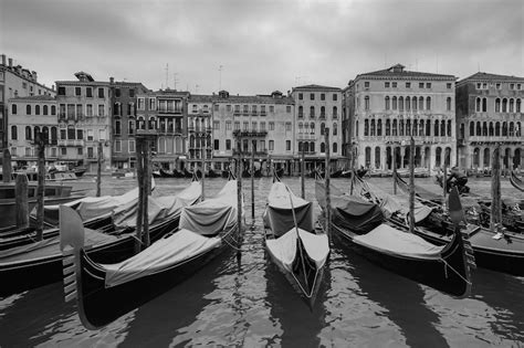 Venice Black venice in black and white planet bell