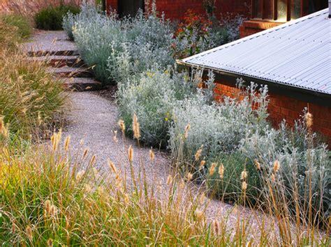 www backyard blending into bushland burke s backyard