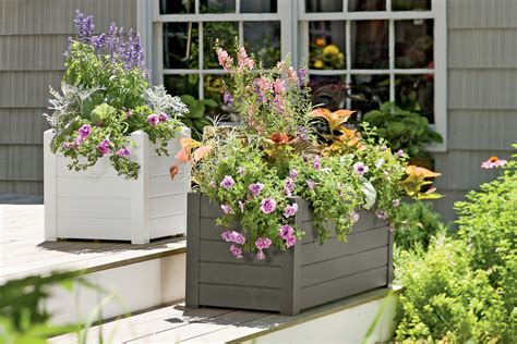 self watering planters pots and planters self watering planters