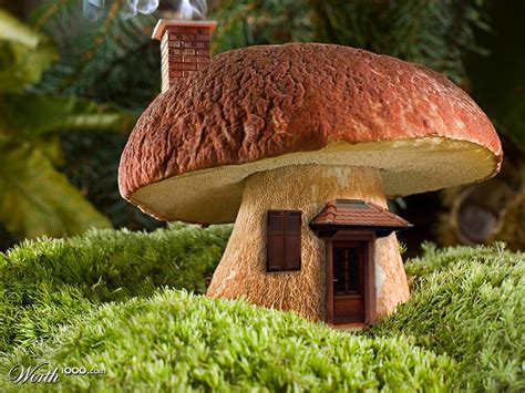 mushroom growing house design mini mushroom house worth1000 contests