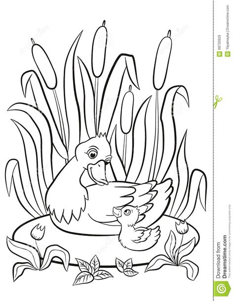 coloring pages ducks in a pond kind duck and little cute duckling swim on the pond and