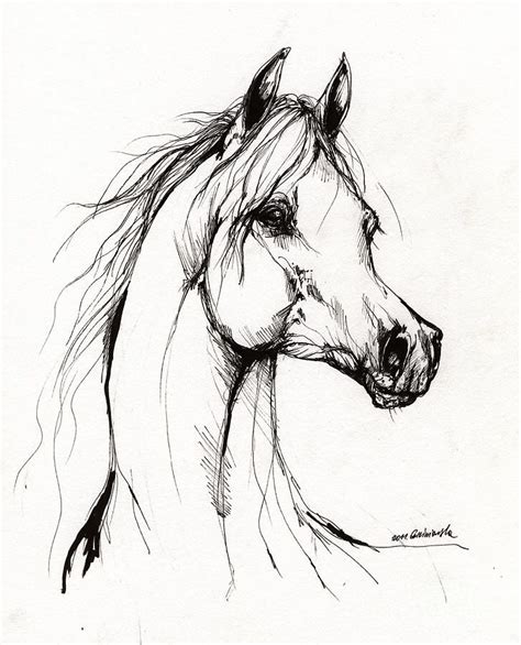 Sketches Horses by 17 Best Ideas About Drawings On