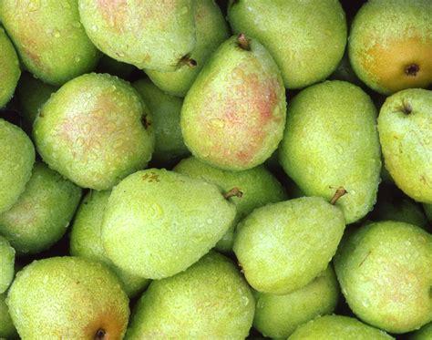 P C Black Pear Sho pear hd desktop wallpapers