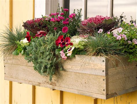 Fall Planter Box Ideas by Fall Container Gardens