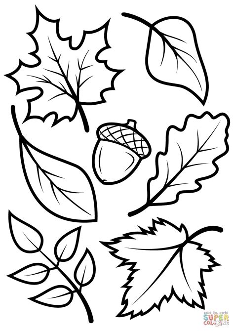 Autumn Coloring Pictures by Autumn Colors Coloring Page Fall Leaves Coloring Page