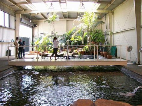 interior design indoor fish pond design with small garden