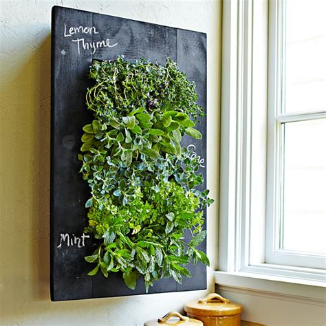 wall mounted herb garden wall mount herb garden williams sonoma mile high homes