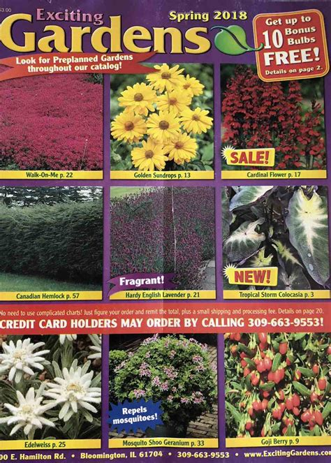 Garden Plants Catalogs by 60 Free Seed Catalogs And Plant Catalogs