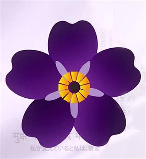 imagenes flores no me olvides nomeolvides diario armenia