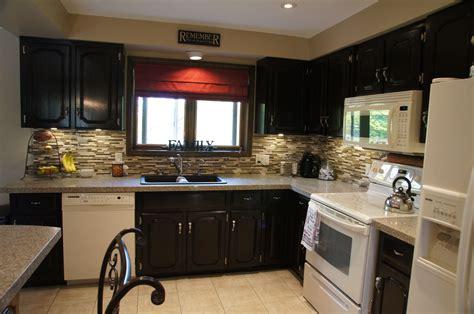 cabinet colors  black appliances decoration