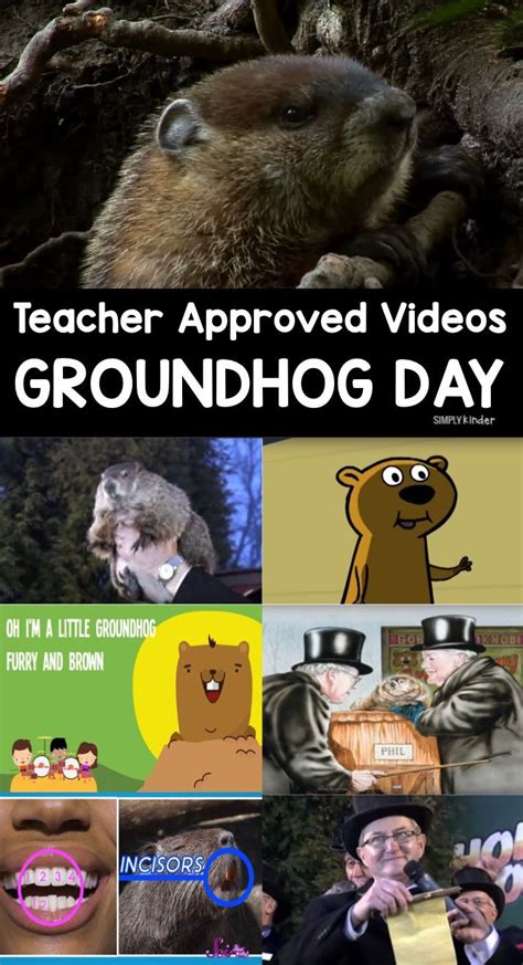 groundhog day supplies best 25 groundhog day ideas on groundhog day