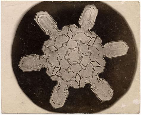 bentley photographic coupon wilson a bentley snowflake photograph at 1stdibs
