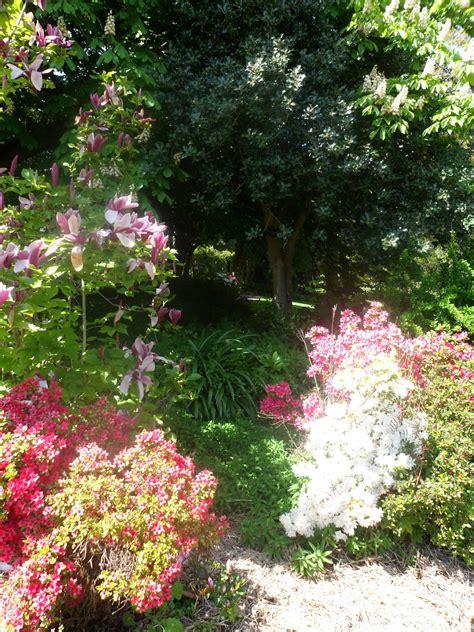 Observatory Cafe Botanical Gardens Botanical Gardens Melbourne Cafe Shannon S Jardin Cafe In Royal Botanic Gardens Relaunched