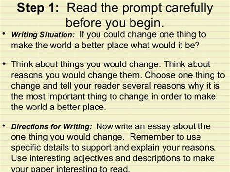 If I Could Change The World Essay by Canned Essay