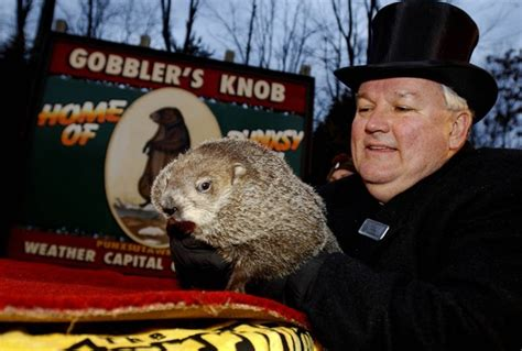 groundhog day kickass puxatony phil s groundhog day predictions will reveal how