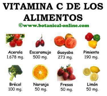 alimentos con m s vitamina c blog de plantas los mejores antioxidantes