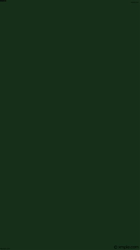 solid dark green wallpaper wallpaper solid color one colour green single plain