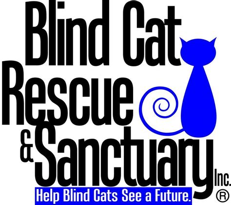 blind cat rescue sanctuary inc nonprofit in st pauls nc