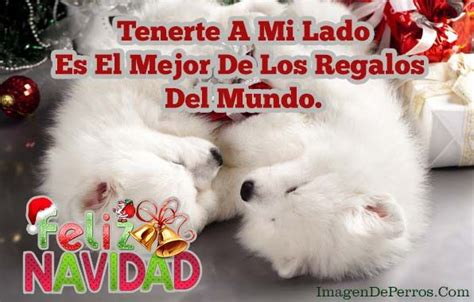 imagenes feliz navidad con perros 223 best diciembre images on pinterest