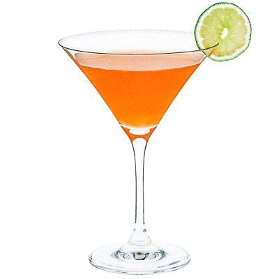 orange martini recipe orange slice martini recipe